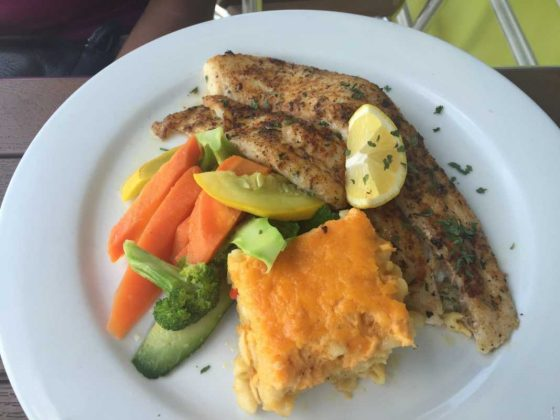 Fresh Catch Grilled Snapper Turks and Caicos