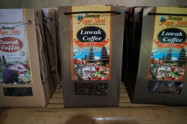luwak-coffee-for-sale