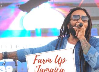 Farm Up Jamaica