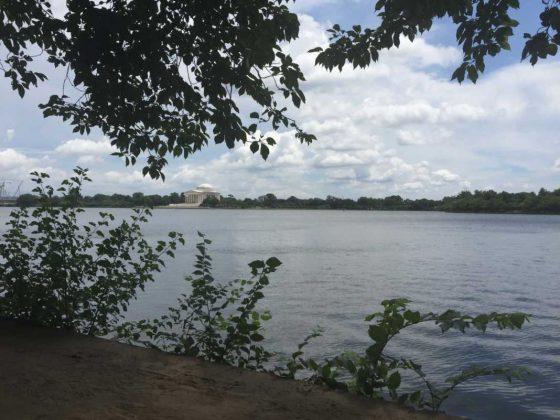 A long walk in the park near Lincoln Memorial