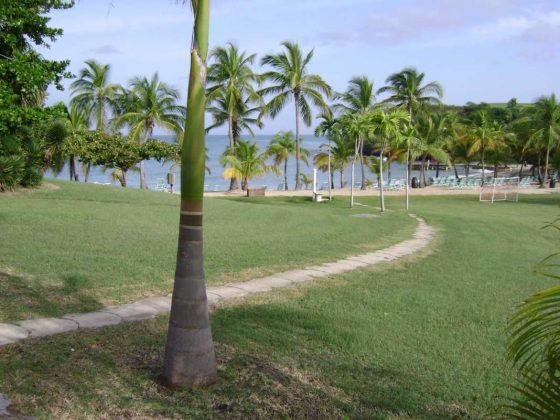 The Buccaneer, Beach