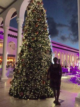 Paradisus Hotel at Christmas
